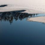 Naturfoto morgon-6
