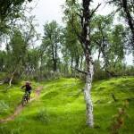 aventyr-upplevelse-stockholm-1