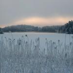 13-01-Naturforomorgon-5