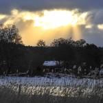 Naturfotomorgon-Lasse-3