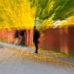 photowalk-stockholm-12oktober-13