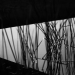 fotokurs-äventyr-upplevelse-9