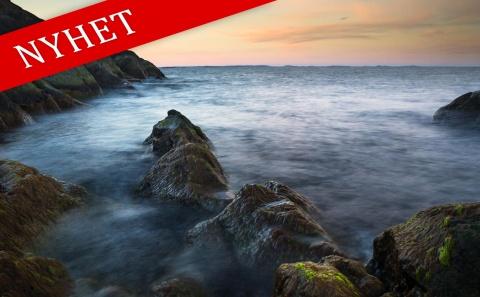 Lär dig naturfotografering på Landsort