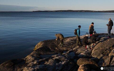 Följ med på naturfoto i stockholms skärgård