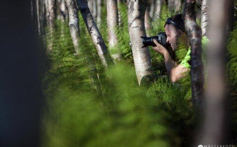 Lanskapsfoto ute i skogen. Gån fotokurs för naturfotografen.