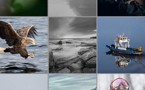 Lämna in olika fotouppdrag eller fototeman för feedback.