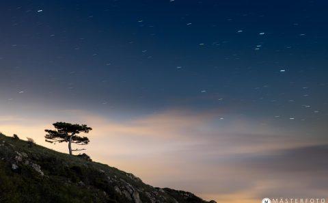 Magiskt månsken som lyser upp landskapet i Kullaberg. Gå en fotokurs!